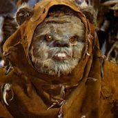 Star Wars~Return of the Jedi: Ewok - Deej, Father of Wicket (Crewman/Forest Survival Expert)